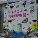 伊丹昆虫館はカブトムシグッズも買える!駐車場やアクセス、入場料も!