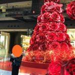 梅田クリスマスツリーのおすすめを紹介!!イルミネーションがめっちゃキレイです♪